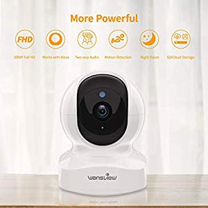 Wansview Home Camera, Great Cloud Features